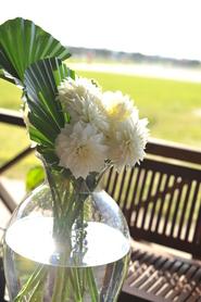 結婚式に咲く花は、 (3月27日)